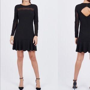 Bebe Little Black Dress. Sexy, Short & Sweet!